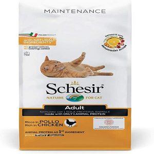 غذا خشک گربه بالغ شسیر مدل maintenance